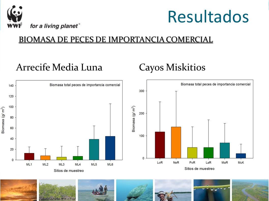 Resultados BIOMASA DE PECES DE IMPORTANCIA COMERCIAL