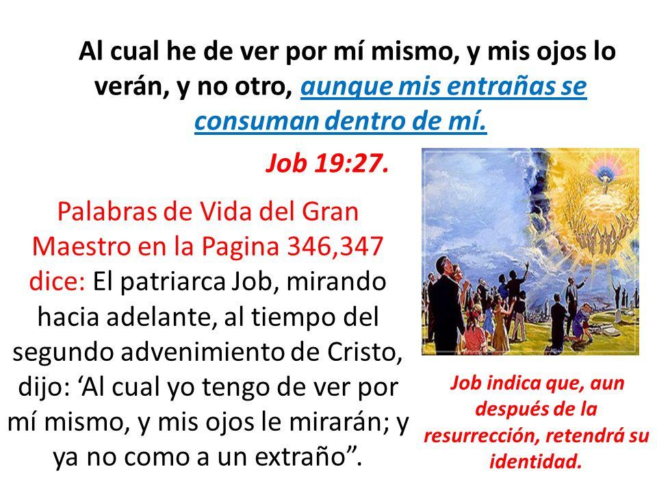 Job indica que, aun después de la resurrección, retendrá su identidad.