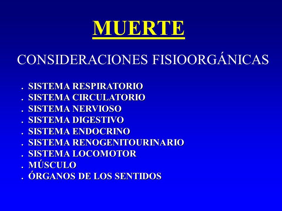 MUERTE CONSIDERACIONES FISIOORGÁNICAS . SISTEMA RESPIRATORIO