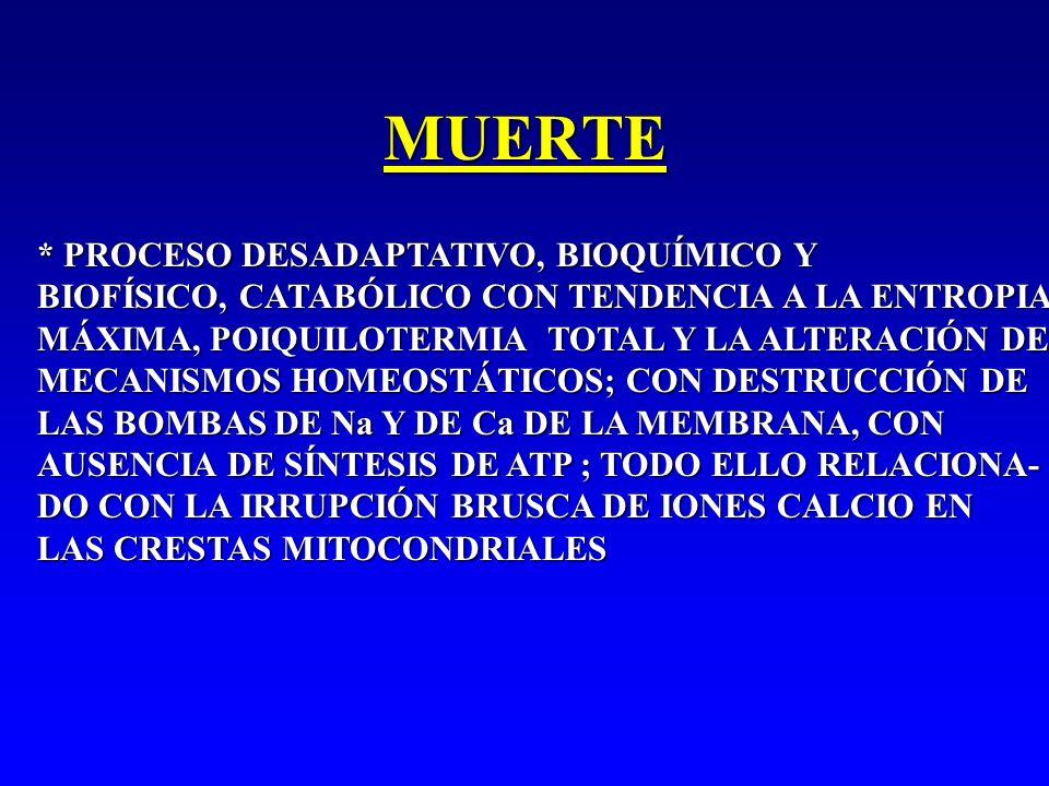 MUERTE * PROCESO DESADAPTATIVO, BIOQUÍMICO Y