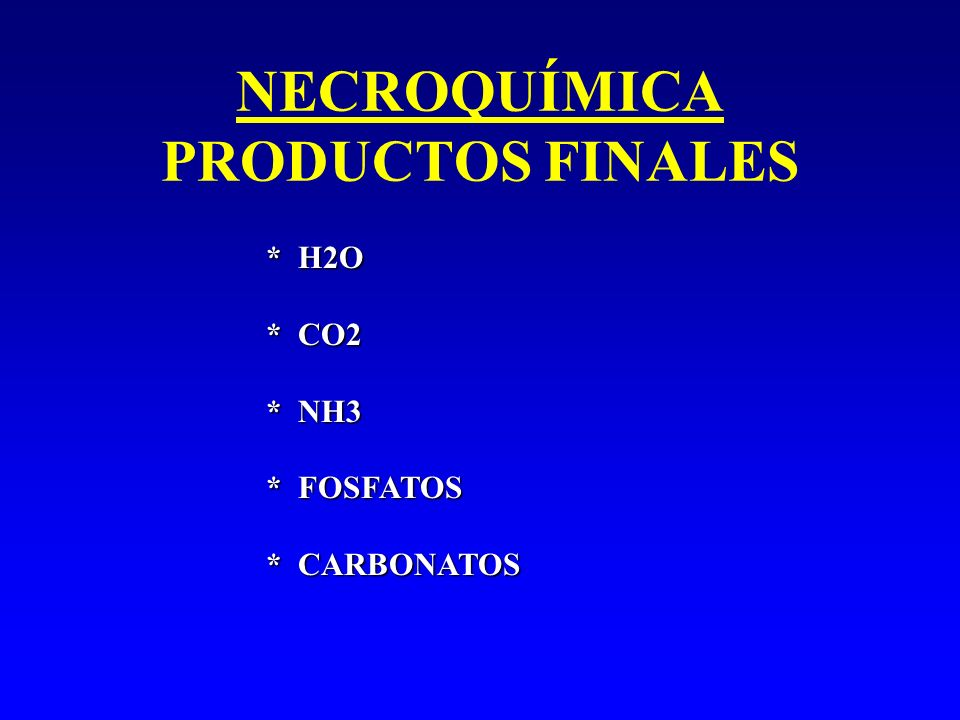 NECROQUÍMICA PRODUCTOS FINALES