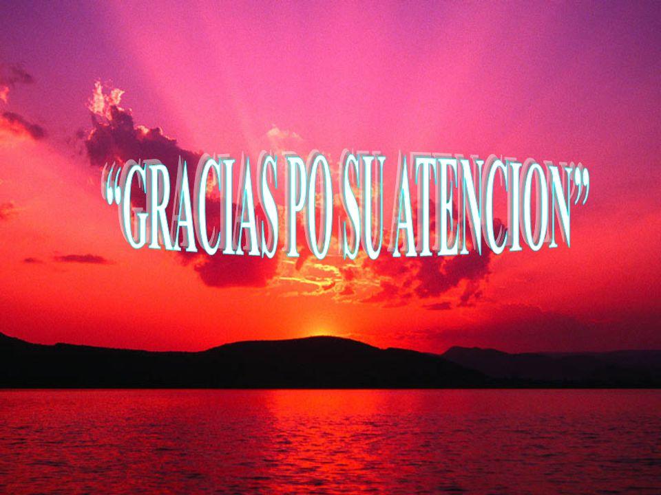 GRACIAS PO SU ATENCION