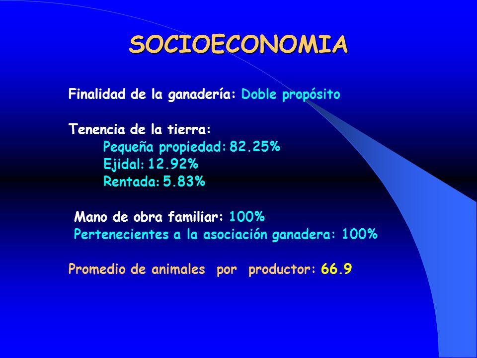 SOCIOECONOMIA Finalidad de la ganadería: Doble propósito