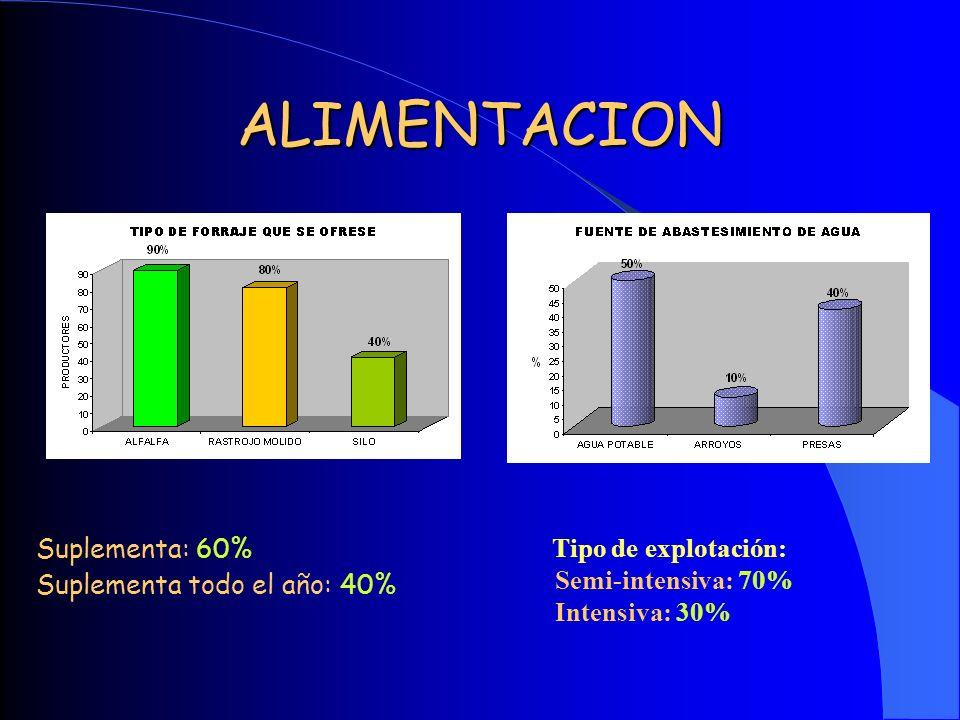 ALIMENTACION Suplementa: 60% Suplementa todo el año: 40%