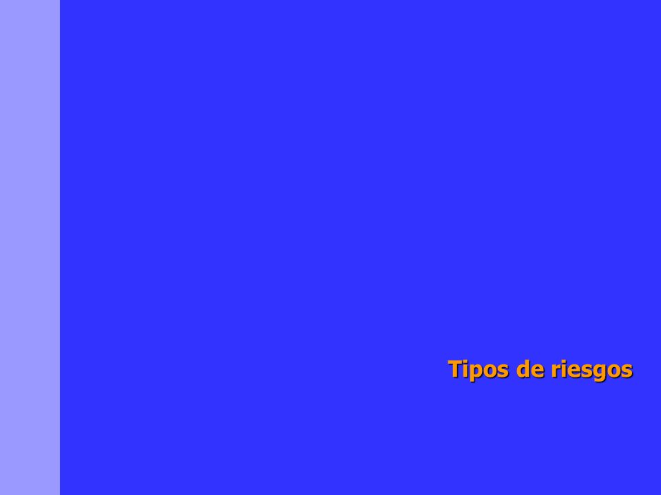 Tipos de riesgos Risk and Financial System Ltda