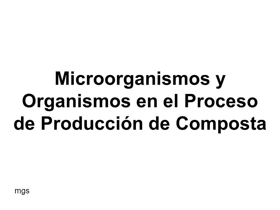Microorganismos y Organismos en el Proceso de Producción de Composta