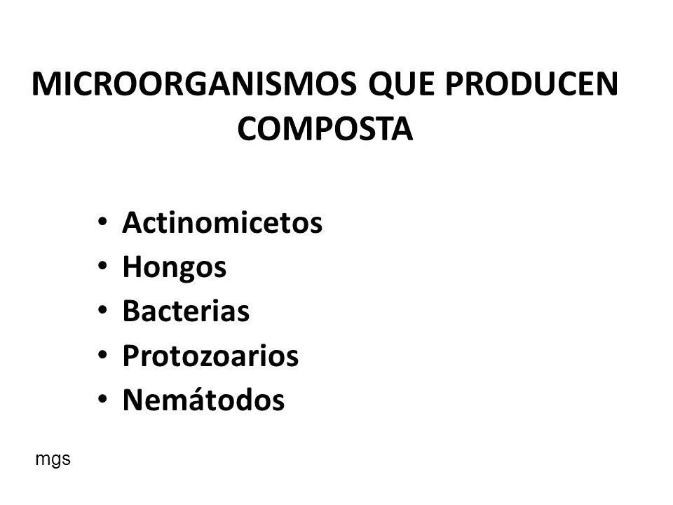 MICROORGANISMOS QUE PRODUCEN COMPOSTA