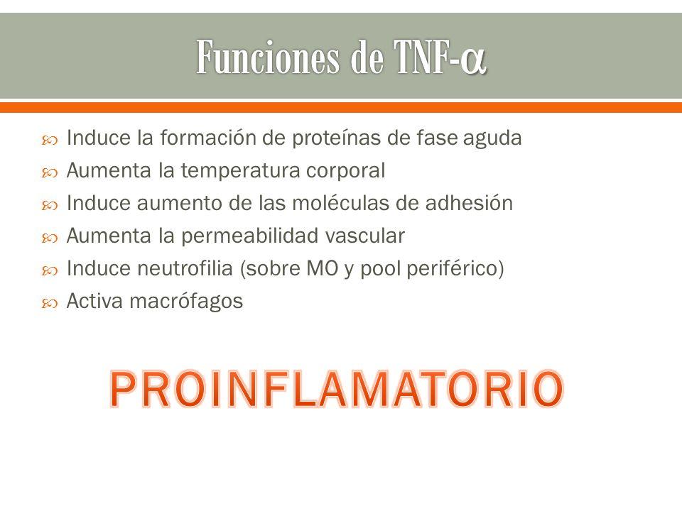 Funciones de TNF-α PROINFLAMATORIO
