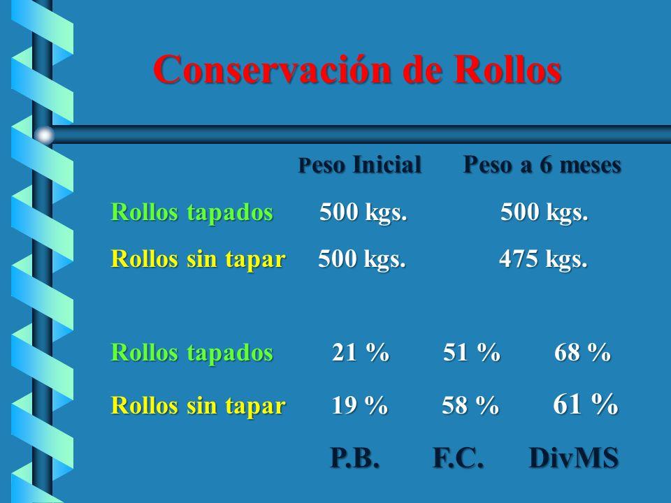 Conservación de Rollos