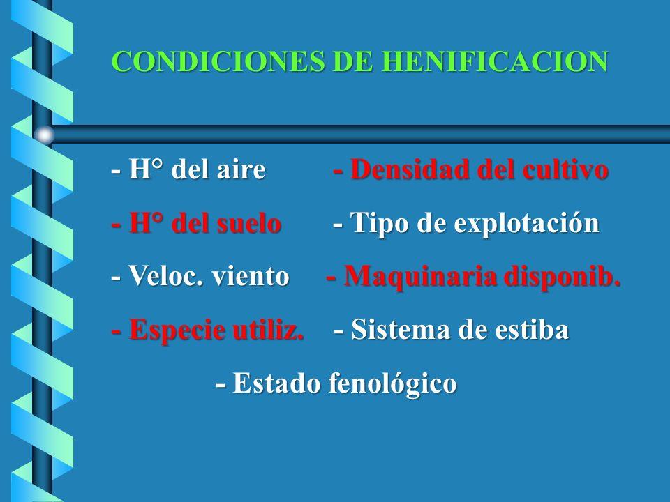CONDICIONES DE HENIFICACION