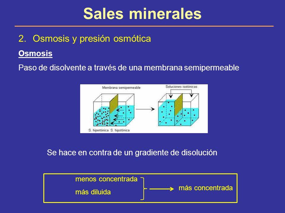 Sales minerales Osmosis y presión osmótica