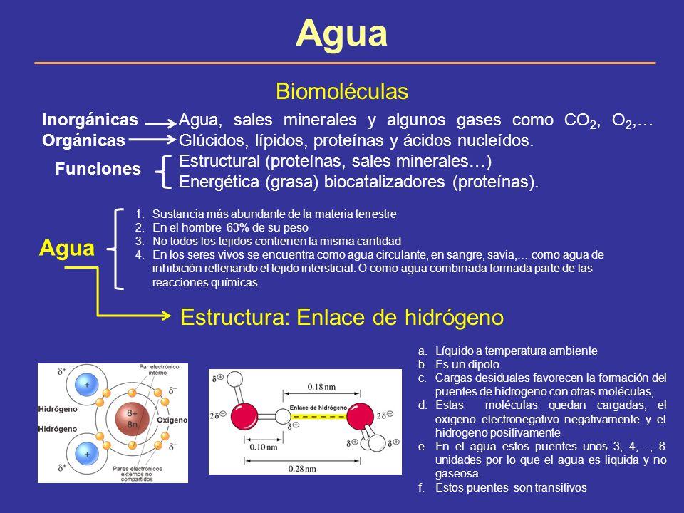 Estructura: Enlace de hidrógeno