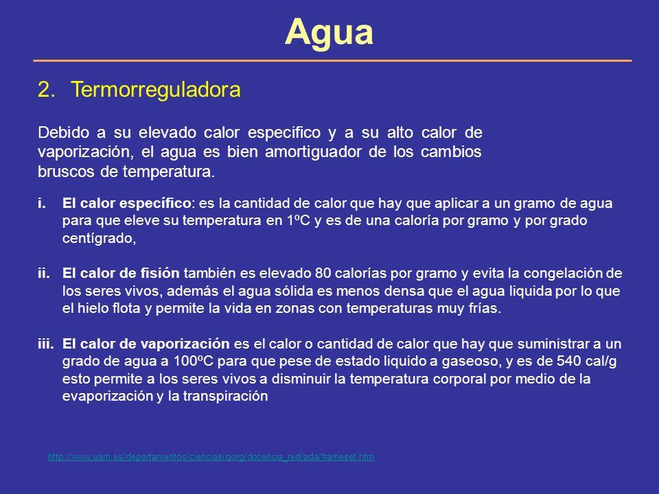 Agua Termorreguladora