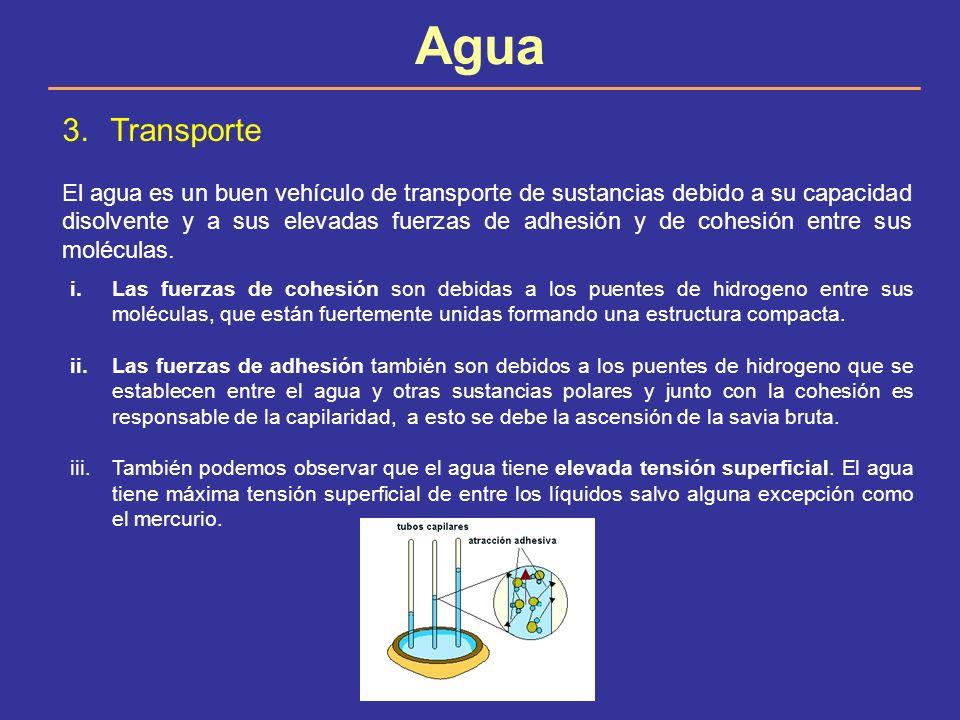 Agua Transporte.