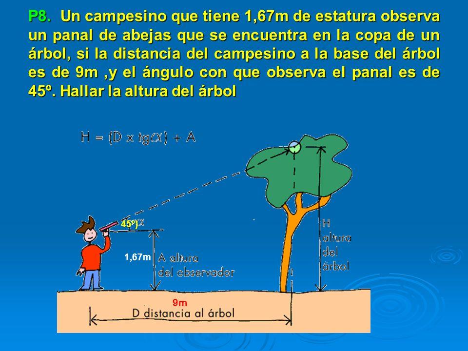 P8. Un campesino que tiene 1,67m de estatura observa un panal de abejas que se encuentra en la copa de un árbol, si la distancia del campesino a la base del árbol es de 9m ,y el ángulo con que observa el panal es de 45º. Hallar la altura del árbol