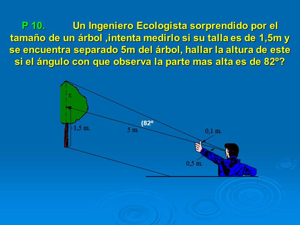 P 10. Un Ingeniero Ecologista sorprendido por el tamaño de un árbol ,intenta medirlo si su talla es de 1,5m y se encuentra separado 5m del árbol, hallar la altura de este si el ángulo con que observa la parte mas alta es de 82º