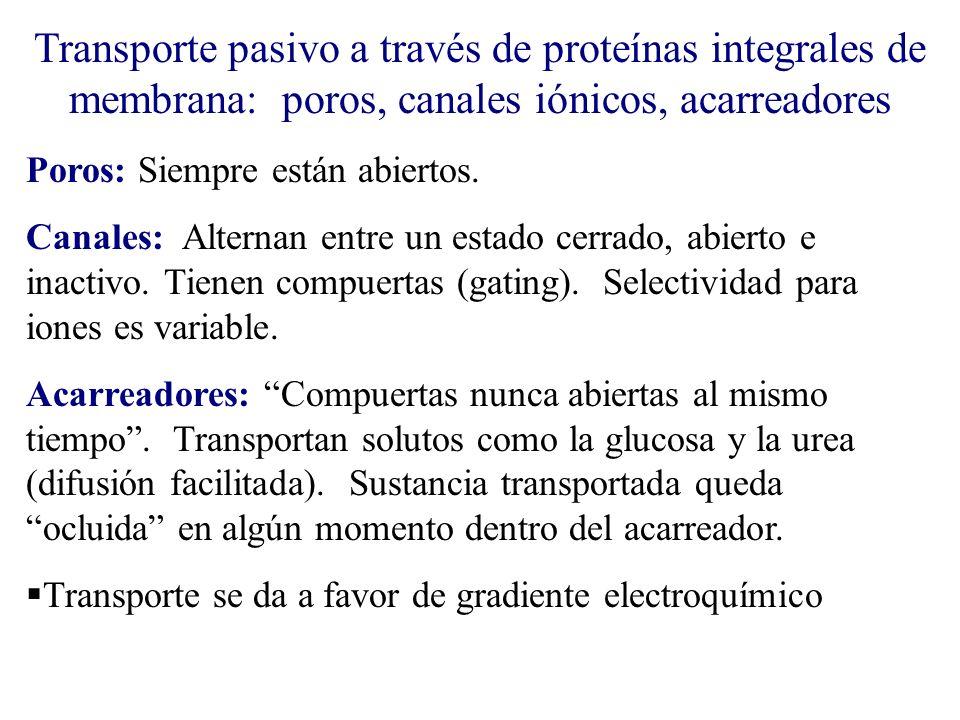 Transporte pasivo a través de proteínas integrales de membrana: poros, canales iónicos, acarreadores