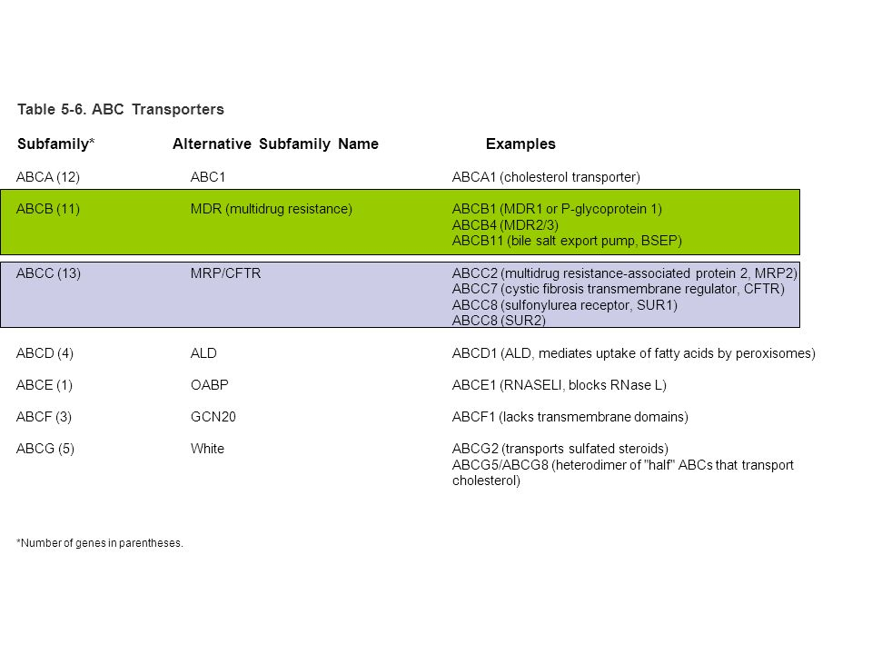 Table 5-6. ABC Transporters