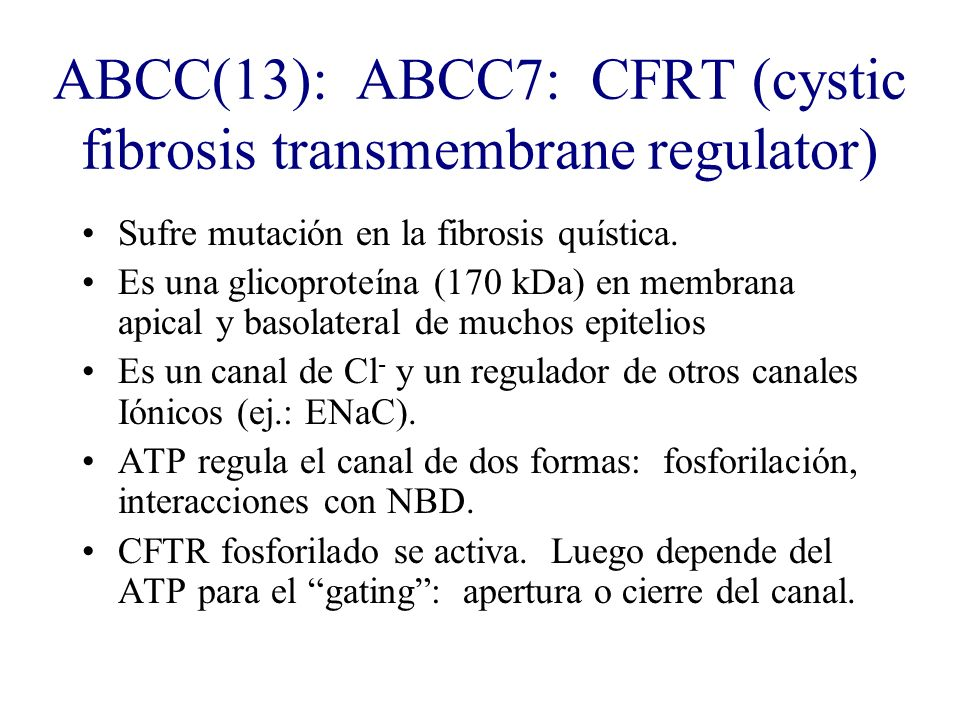 ABCC(13): ABCC7: CFRT (cystic fibrosis transmembrane regulator)