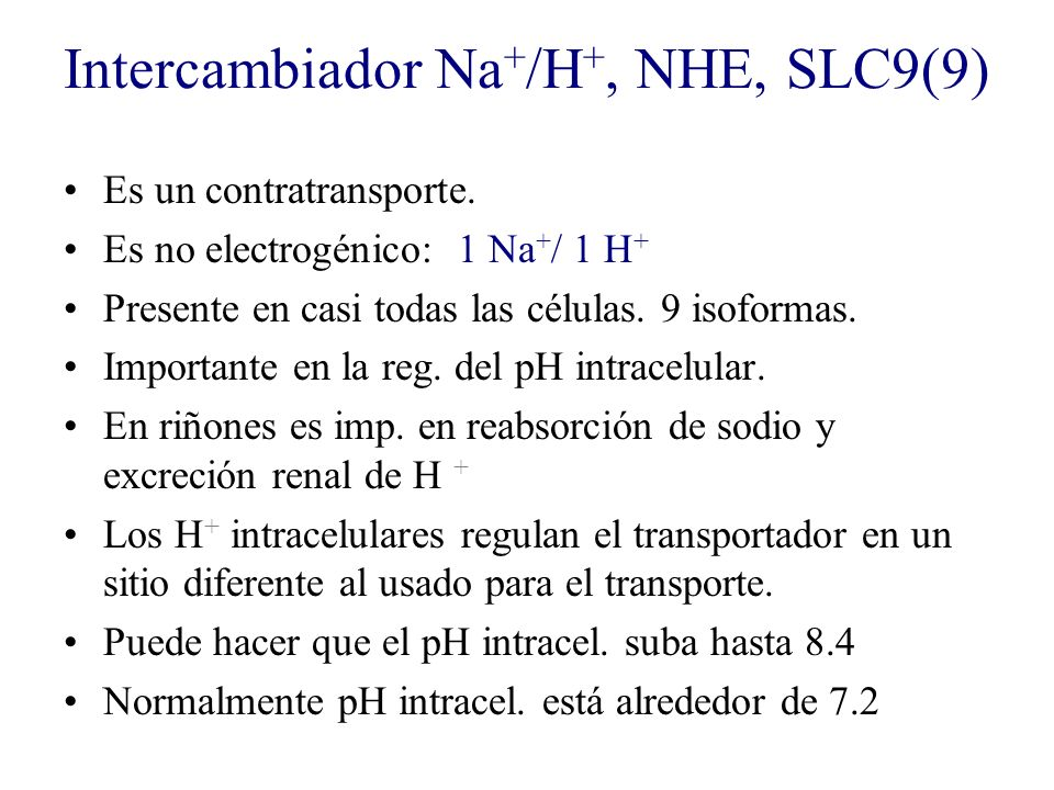 Intercambiador Na+/H+, NHE, SLC9(9)