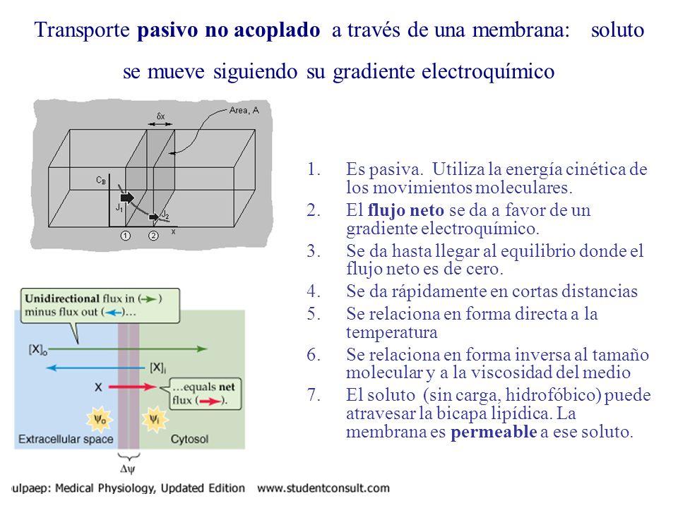 Transporte pasivo no acoplado a través de una membrana: soluto se mueve siguiendo su gradiente electroquímico