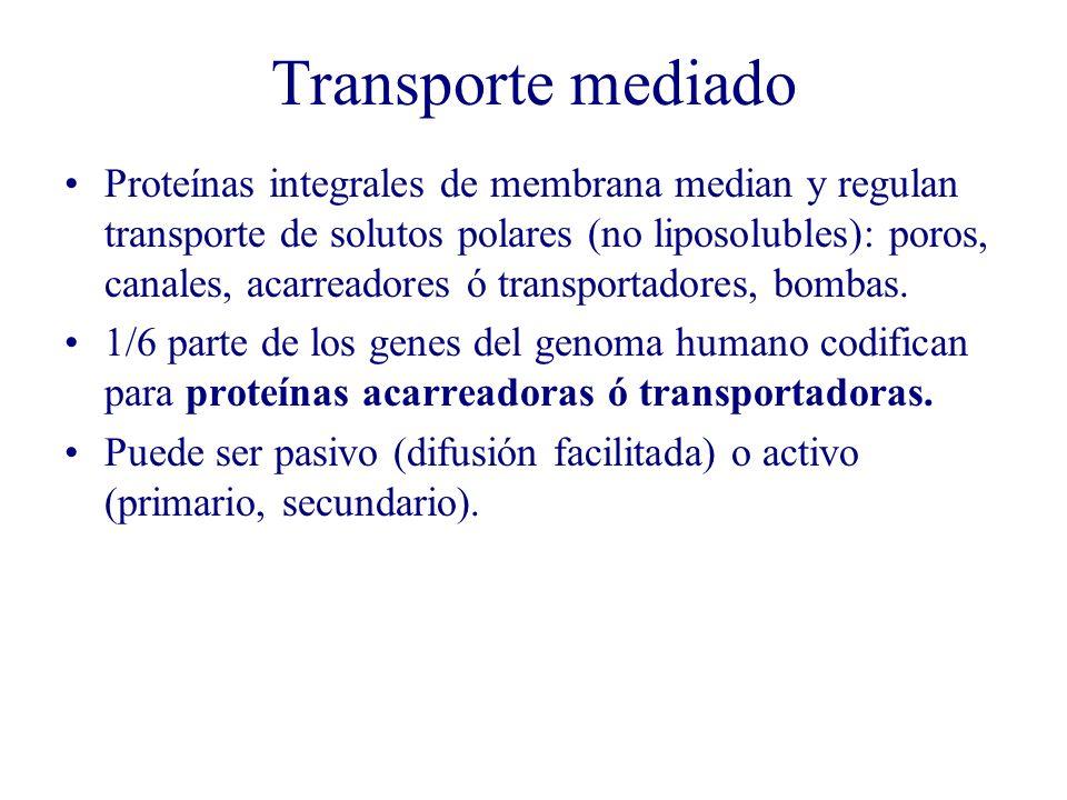 Transporte mediado
