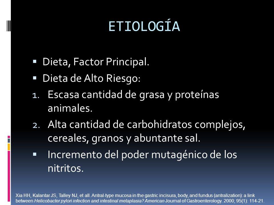 ETIOLOGÍA Dieta, Factor Principal. Dieta de Alto Riesgo: