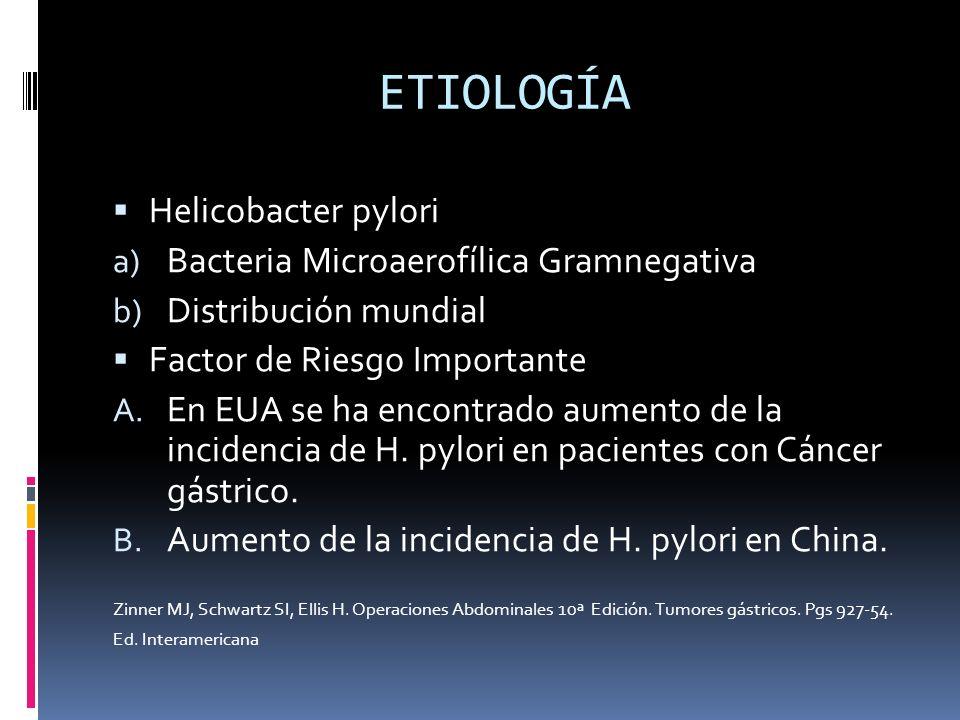 ETIOLOGÍA Helicobacter pylori Bacteria Microaerofílica Gramnegativa