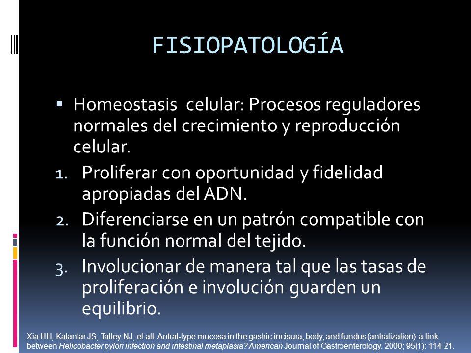 FISIOPATOLOGÍA Homeostasis celular: Procesos reguladores normales del crecimiento y reproducción celular.
