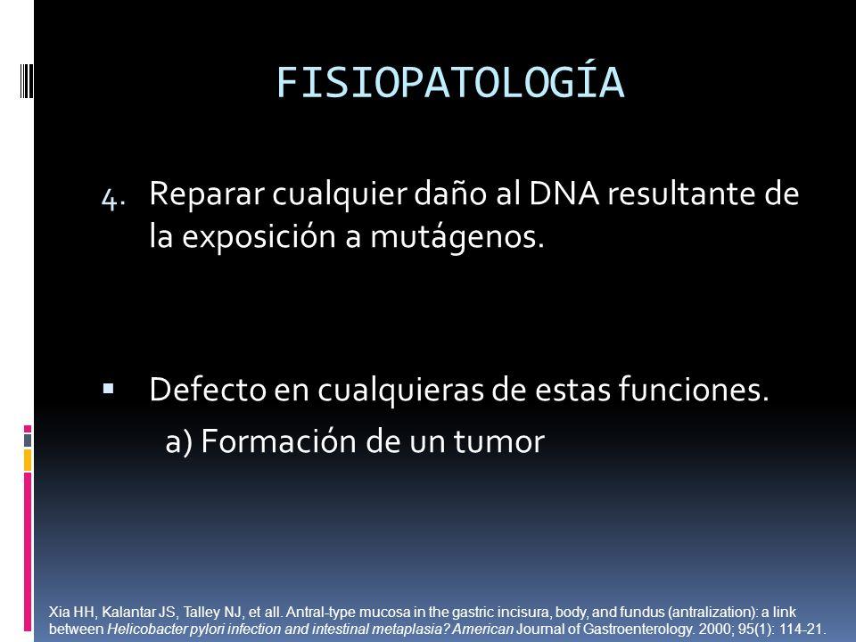 FISIOPATOLOGÍAReparar cualquier daño al DNA resultante de la exposición a mutágenos. Defecto en cualquieras de estas funciones.
