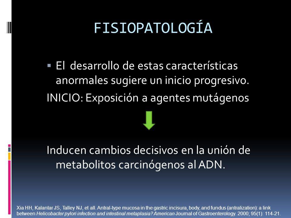 FISIOPATOLOGÍA El desarrollo de estas características anormales sugiere un inicio progresivo. INICIO: Exposición a agentes mutágenos.