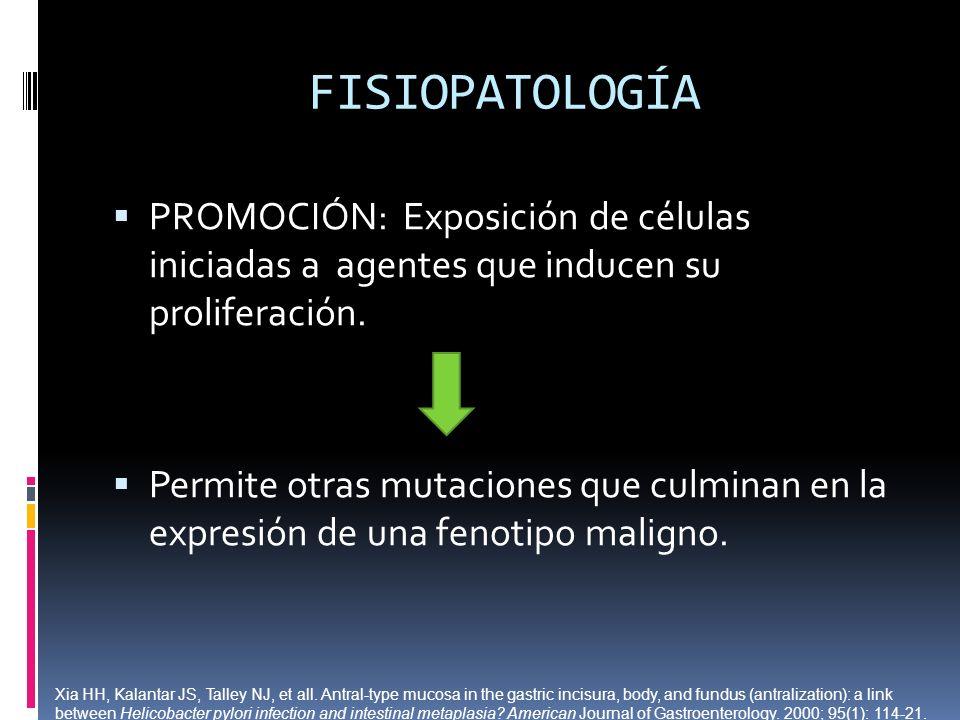 FISIOPATOLOGÍA PROMOCIÓN: Exposición de células iniciadas a agentes que inducen su proliferación.