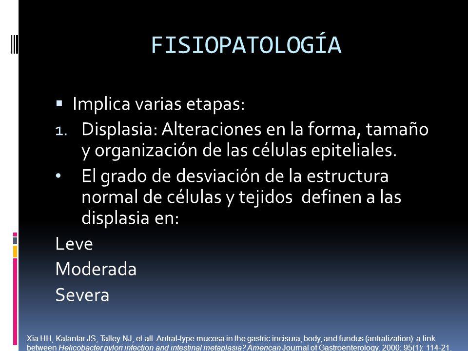 FISIOPATOLOGÍA Implica varias etapas: