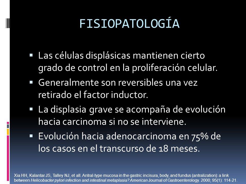 FISIOPATOLOGÍA Las células displásicas mantienen cierto grado de control en la proliferación celular.