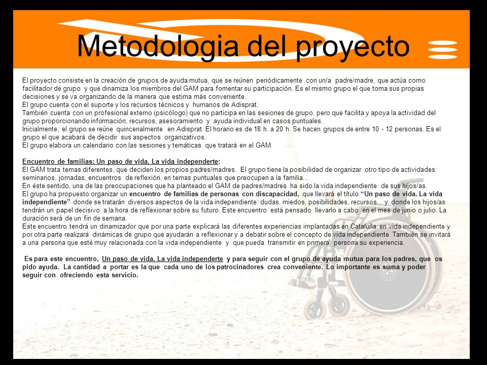 Metodologia del proyecto