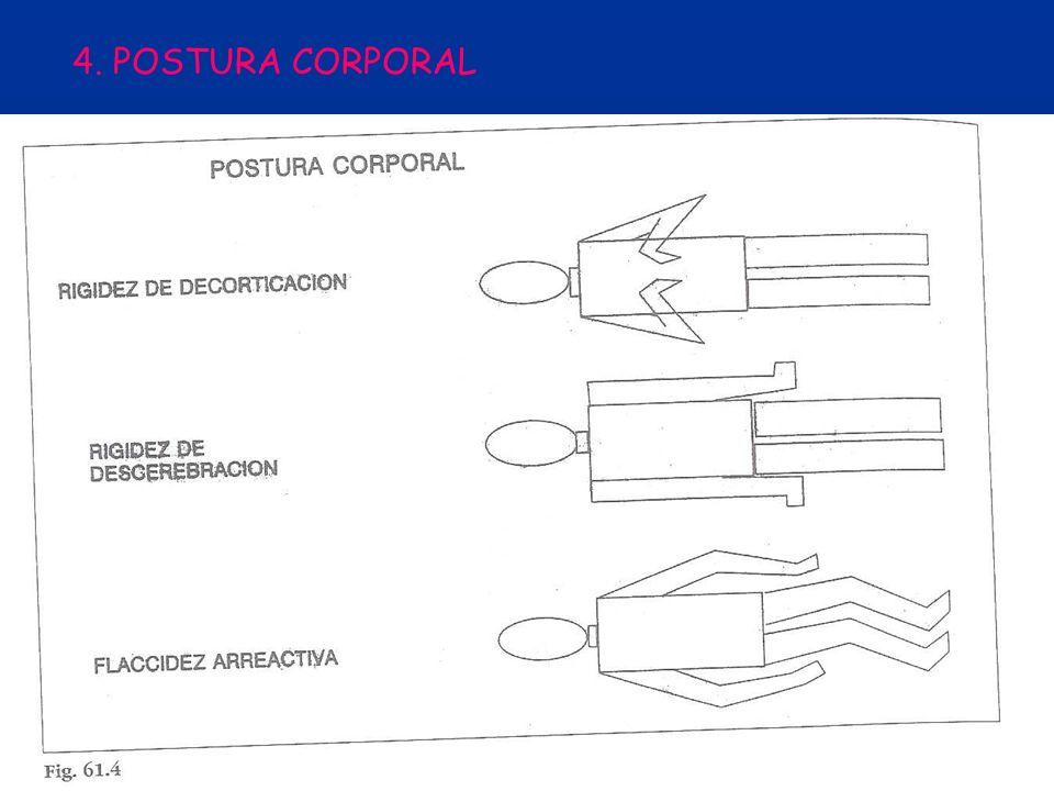 4. POSTURA CORPORAL
