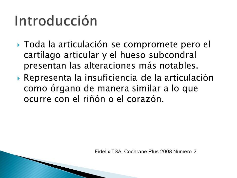 IntroducciónToda la articulación se compromete pero el cartílago articular y el hueso subcondral presentan las alteraciones más notables.