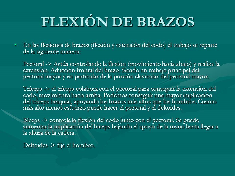 FLEXIÓN DE BRAZOS