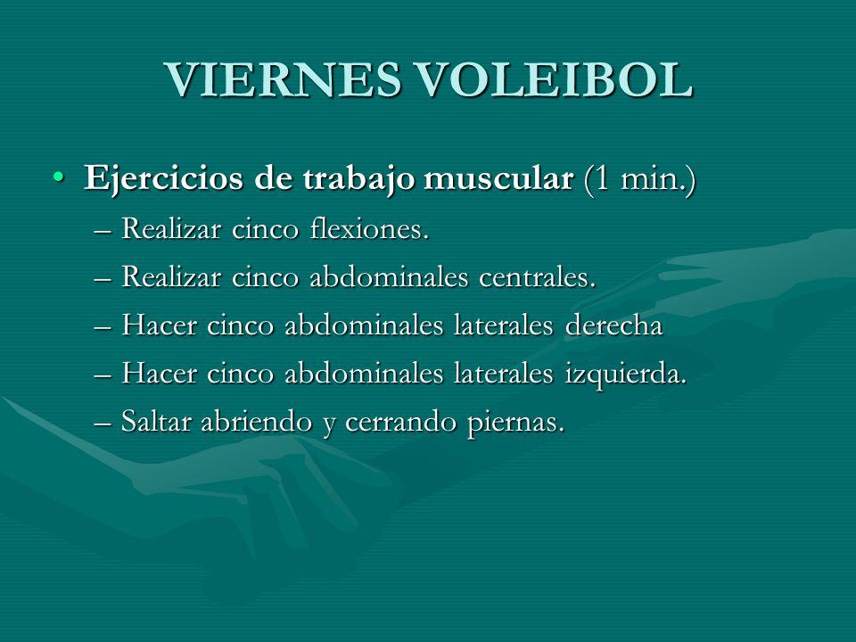 VIERNES VOLEIBOL Ejercicios de trabajo muscular (1 min.)