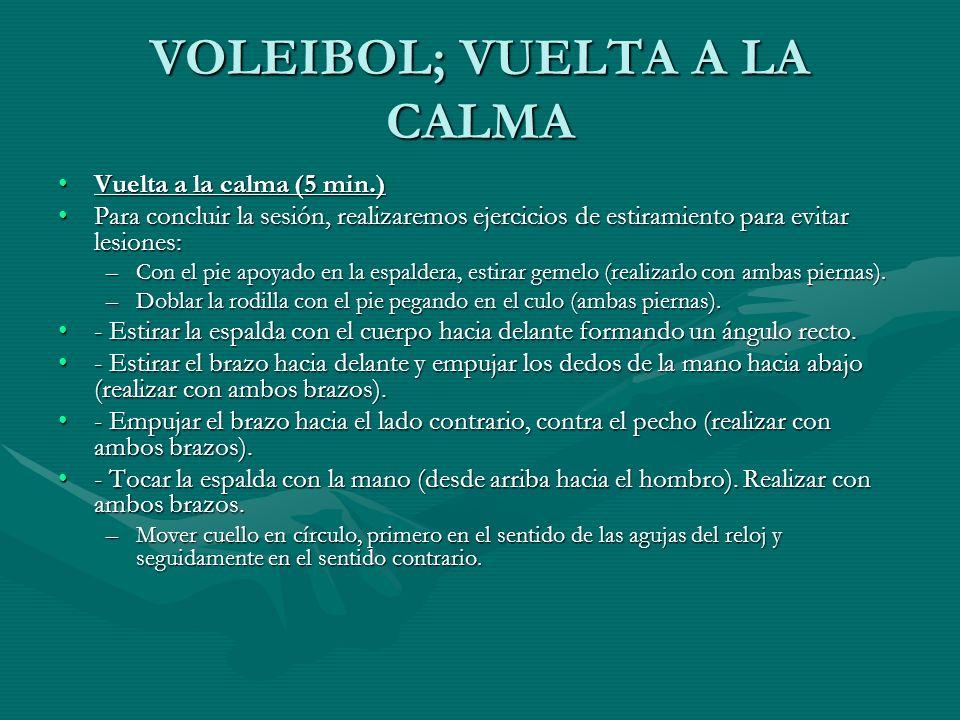 VOLEIBOL; VUELTA A LA CALMA