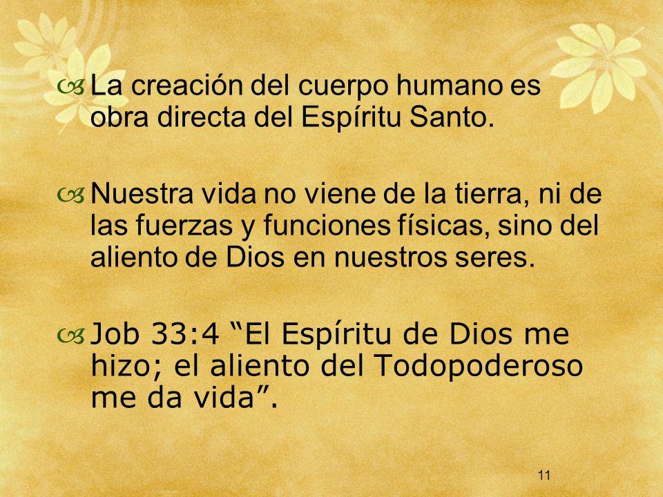 La creación del cuerpo humano es obra directa del Espíritu Santo.