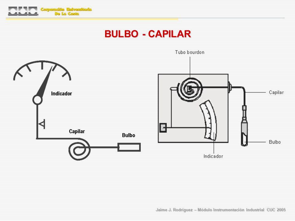 BULBO - CAPILAR