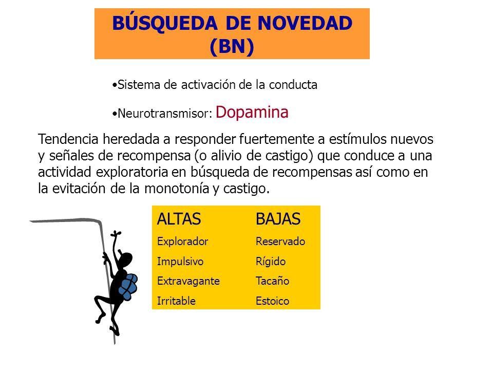 BÚSQUEDA DE NOVEDAD (BN)