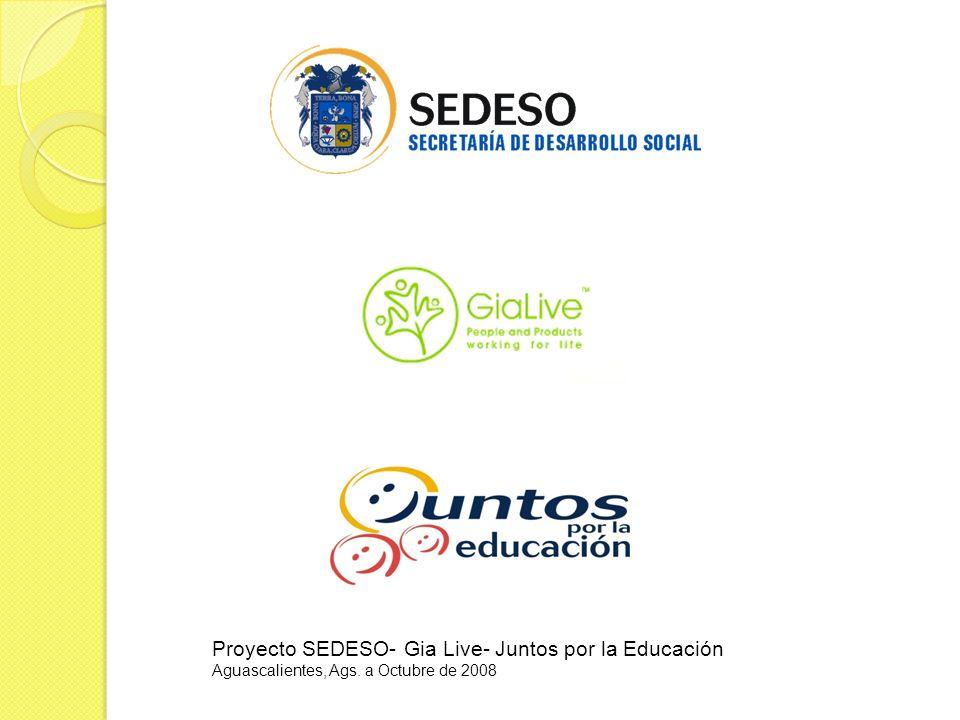 Proyecto SEDESO- Gia Live- Juntos por la Educación