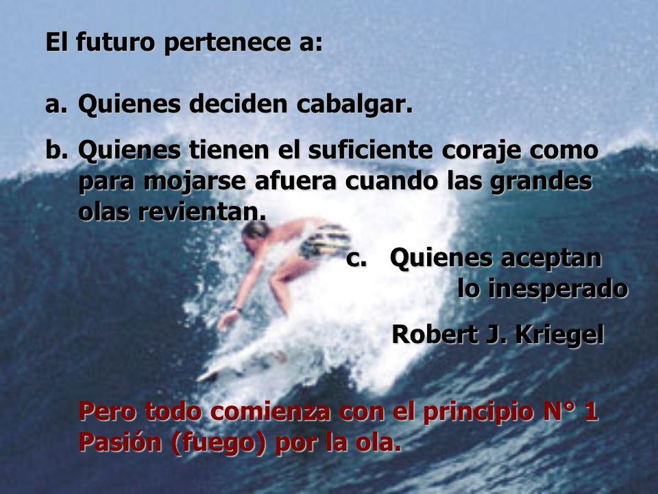 El futuro pertenece a:Quienes deciden cabalgar. Quienes tienen el suficiente coraje como para mojarse afuera cuando las grandes olas revientan.
