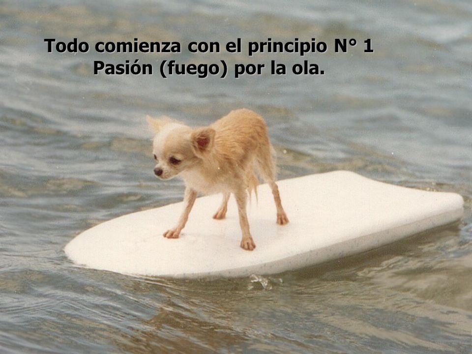 Todo comienza con el principio N° 1 Pasión (fuego) por la ola.