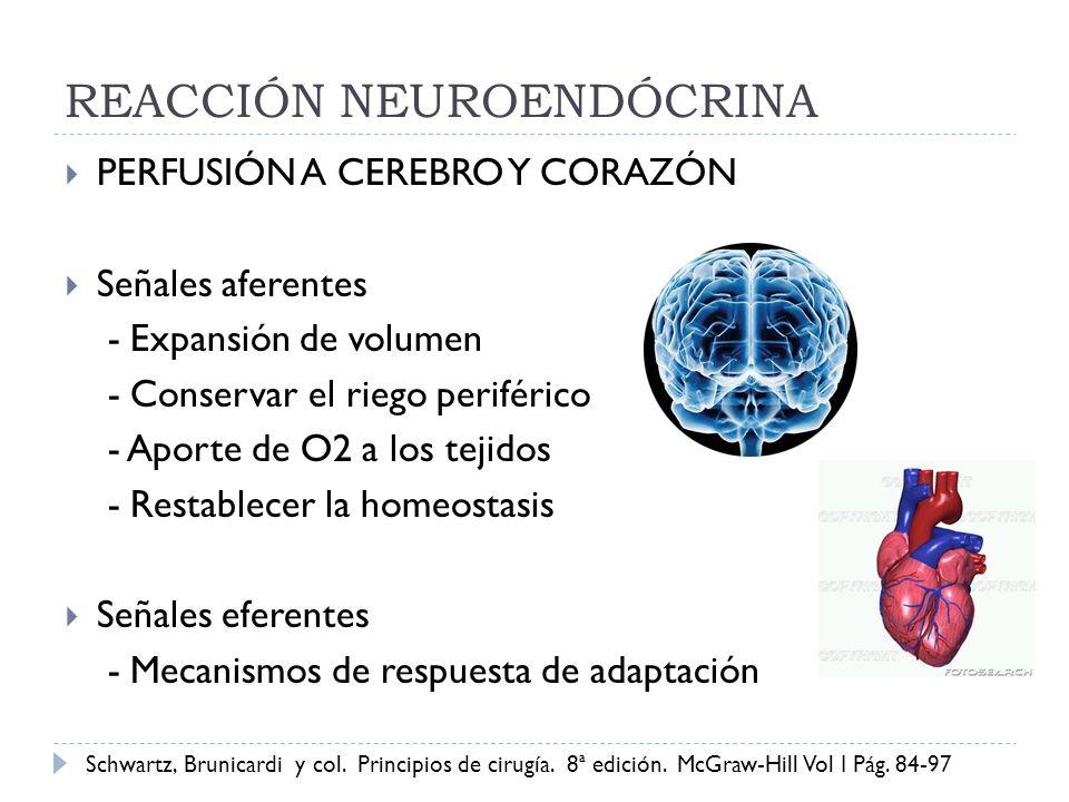 REACCIÓN NEUROENDÓCRINA