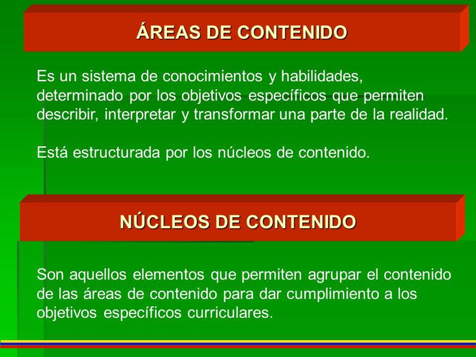 ÁREAS DE CONTENIDO NÚCLEOS DE CONTENIDO