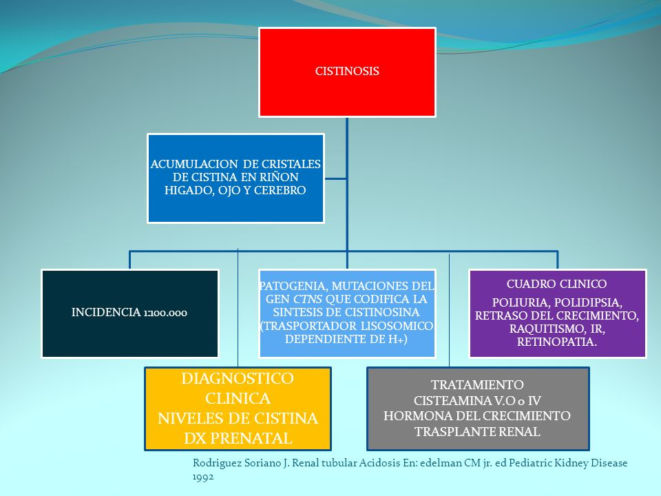 DIAGNOSTICO CLINICA NIVELES DE CISTINA DX PRENATAL TRATAMIENTO
