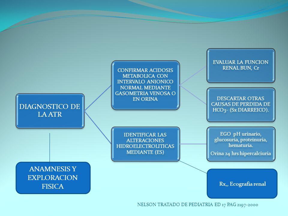 ANAMNESIS Y EXPLORACION FISICA Rx,, Ecografia renal